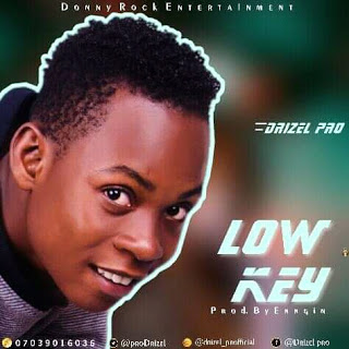 Download Lowkey by Drizel Pro