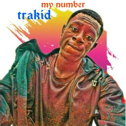 Download My Number by Trakid